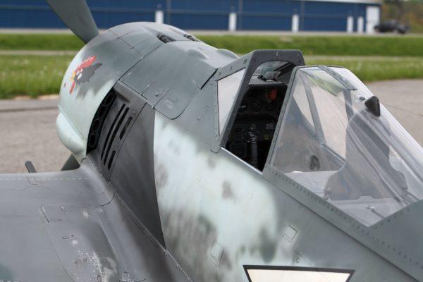 Fw-190 in Warbirdcolors